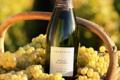Champagne Dominique Crété. Cuvée bulles blanches