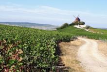 """Champagne Vignon Père & Fils """" Les Marquises """""""