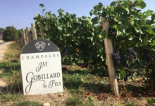Champagne J.M. Gobillard et Fils