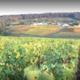 Champagne Chevillet-Morlet