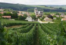 Champagne Hervé Mathelin