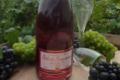 Champagne Gilbert Jacquesson. Brut rosé