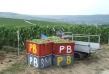 Champagne Patrick Barré