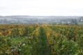 Champagne Cez-Maucourt