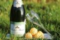 Champagne Rochet Bocart. Blanc de blancs