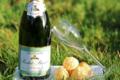 Champagne Rochet Bocart. Blanc de blancs nature