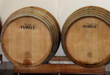Champagne Michel Turgy