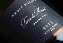 Champagne André Robert. Terroir du Mesnil