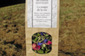 Artemisia infusions. La magie de la vie