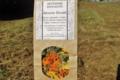 Artemisia infusions. Rêverie florale