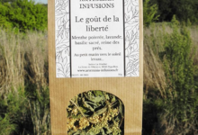 Artemisia infusions. Le goût de la liberté