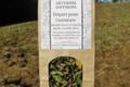 Artemisia infusions. Départ pour l'aventure