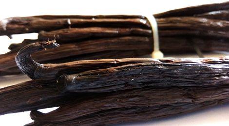 Gousses de vanille de Madagascar