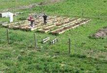 Les Jardins De Pibrac