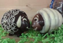 Chocolaterie De Larra