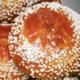 L'Or du pain. Brioche Mouna