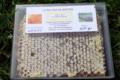 Le rucher de Bastien. Miel en rayon