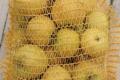 Ferme Bel-Air. Pomme chanteclerc