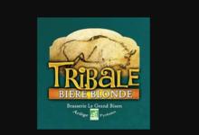 Brasserie Le grand bison. Tribale