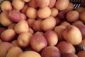 Le Panier de Séverine. Abricots