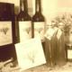 Olivette de Langel. Huile d'olive