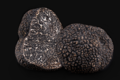 Plantin. Truffe Noire du Périgord
