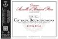 """Domaine Rion Armelle Et Bernard. Coteaux Bourguignons rosé """"cuvée rose"""""""