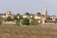 Domaine Vincent Latour