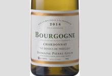 """Domaine Pierre Gelin. Bourgogne chardonnay """"Les dessus de Prielle"""""""