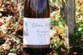 Domaine Ghislain Kohut. Bourgogne Côte D'Or Blanc