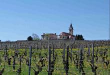 Domaine Montbarbon