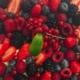 Pâtisserie Chocolaterie Germain. Tarte aux fruits rouges