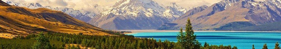 Vins et Liqueurs de Nouvelle-Zélande