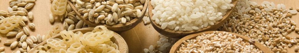 Céréales alimentaires (maïs, seigle, épeautre, quinoa)
