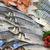 Poisson, algue, coquillage et crustacé